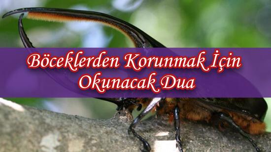 Böceklerden Korunmak İçin Okunacak Dua